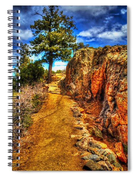 Ponderosa Pine Guarding The Trail Spiral Notebook
