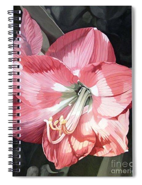 Pink Amaryllis Spiral Notebook