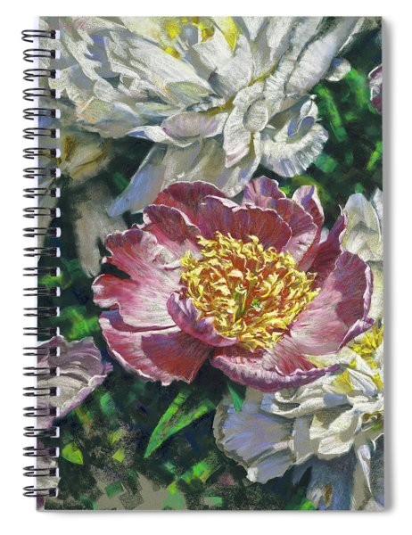 Pink Amid White Spiral Notebook