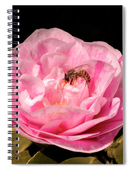 Pink And Bee Spiral Notebook