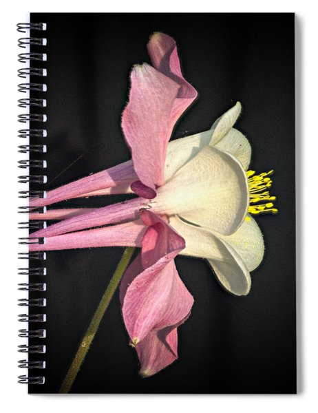 Pink And White Columbine 1 Spiral Notebook