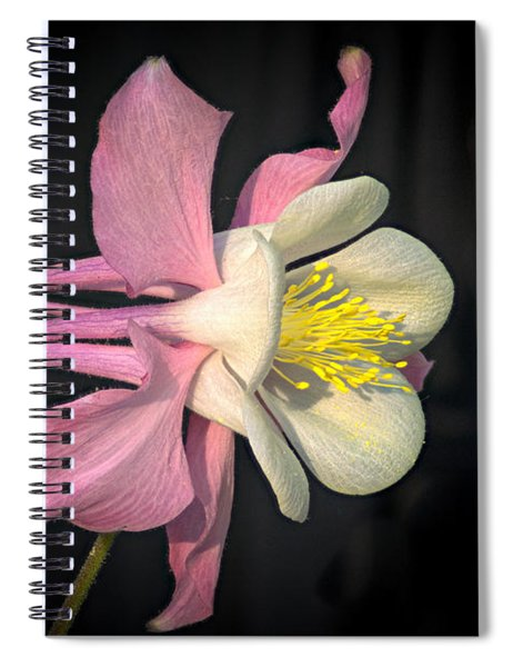 Pink And White Columbine 2 Spiral Notebook