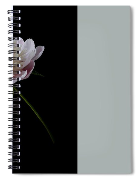 Spiral Notebook featuring the photograph Pink And White Peony by Patti Deters