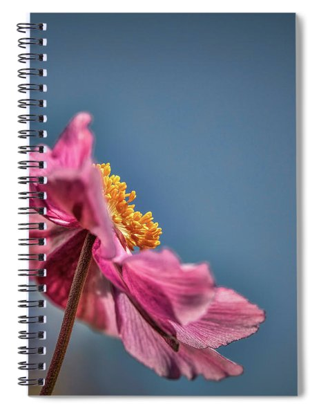 Pink And Yellow Profile #h8 Spiral Notebook