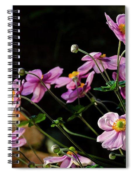 Pink Anemone Hupehensis Spiral Notebook