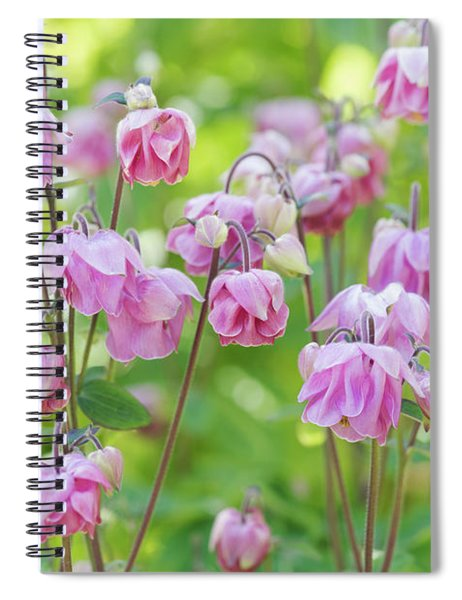 Pink Aquilegia Flowers Spiral Notebook
