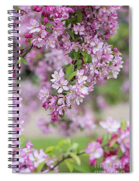 Pink Apple Blossom Spiral Notebook