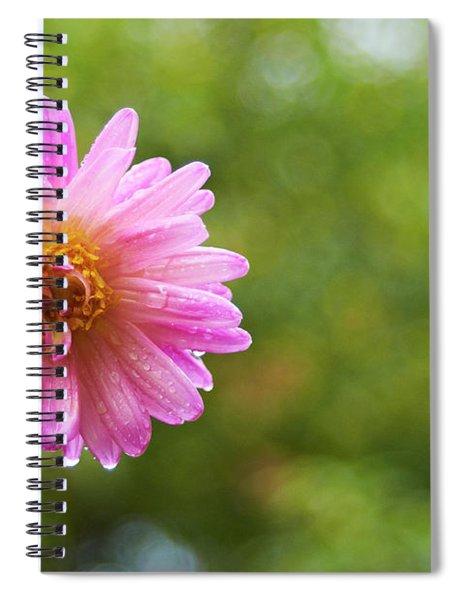 Pink Dahlia 1 Spiral Notebook