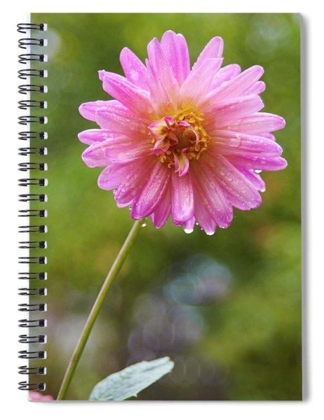 Pink Dahlia 2 Spiral Notebook