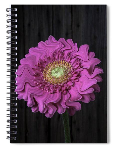 Pink Daisy Surrealism Spiral Notebook