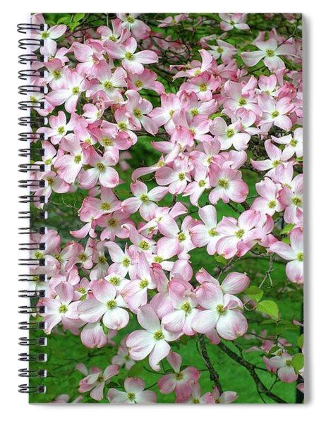 Pink Dogwood Flowers Spiral Notebook