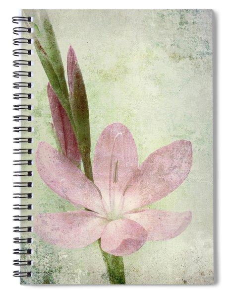Pink Gladiolus On Green Spiral Notebook