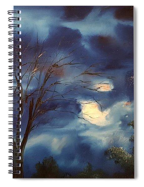 Pink Moon      19 Spiral Notebook