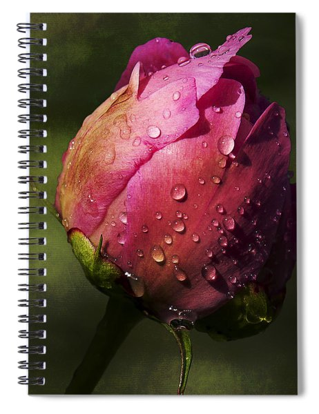 Pink Peony Bud With Dew Drops Spiral Notebook