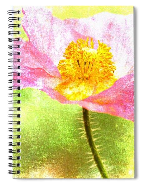 Pink Poppy On Green Spiral Notebook