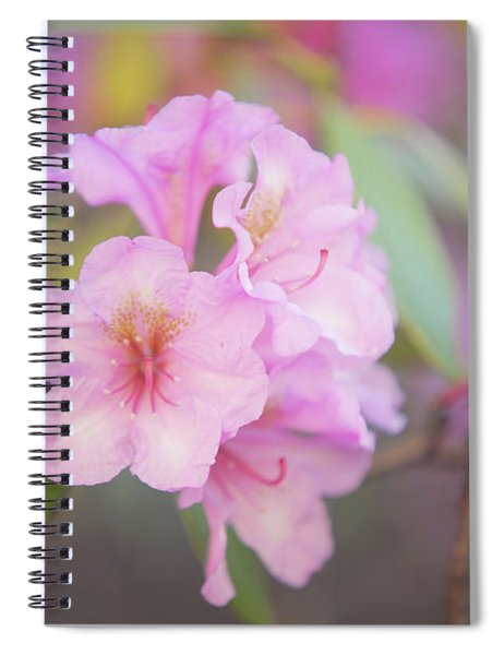 Pink Rhododendron Flowers Spiral Notebook