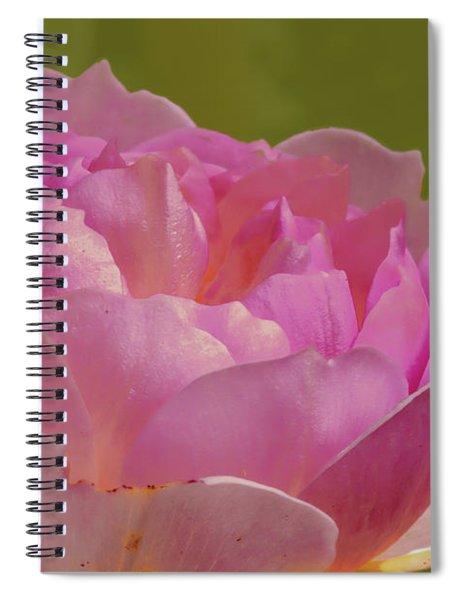 Pink Rose #d3 Spiral Notebook