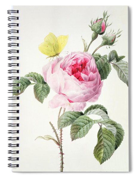 Pink Rose With Buds And A Brimstone Butterfly Spiral Notebook