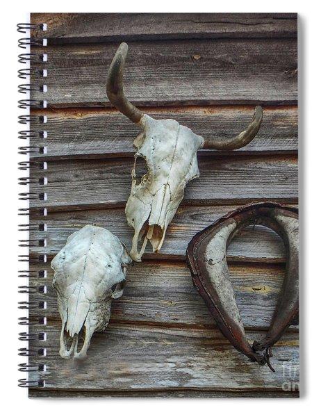 Pioneer Trophies Spiral Notebook