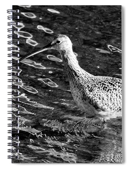 Piper Profile, Black And White Spiral Notebook