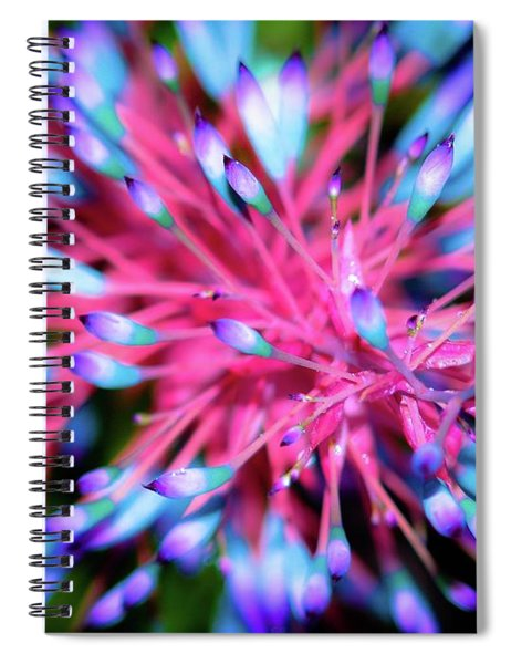 Plants And Flowers In Hawaii 963 Spiral Notebook