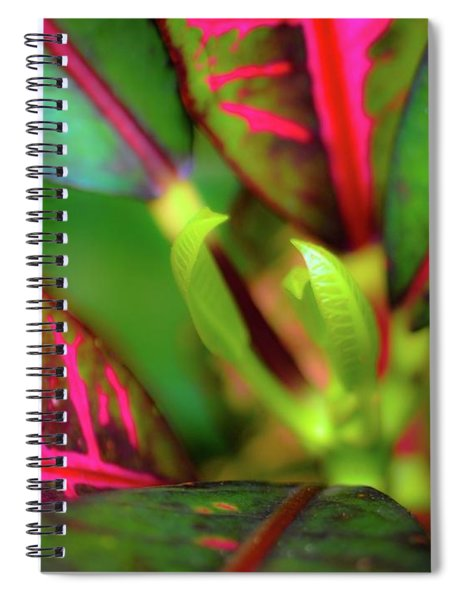 Plants In Hawaii Spiral Notebook