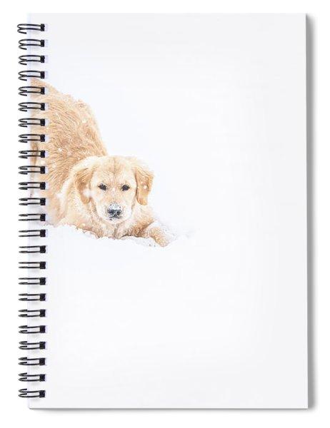 Playful Puppy In So Much Snow Spiral Notebook