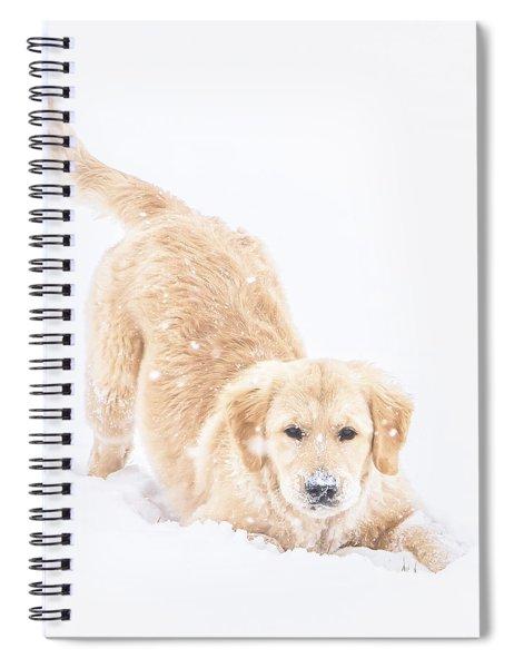 Playful Puppy Spiral Notebook