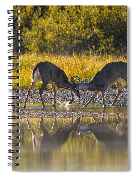 Playful Young Bucks Spiral Notebook