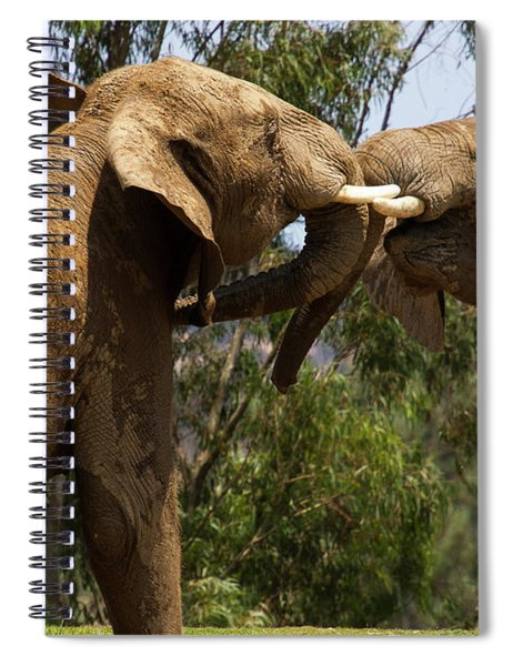 Playing Elephants Spiral Notebook