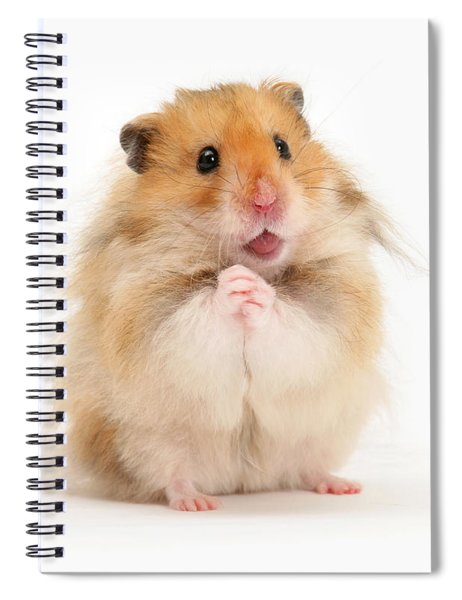 Please Be Mine Spiral Notebook