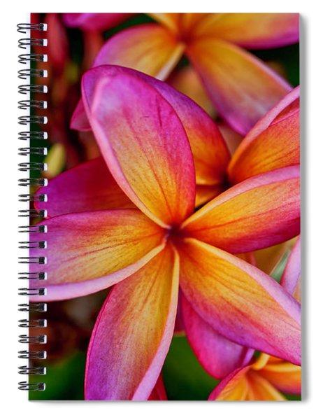 Plumeria Spiral Notebook