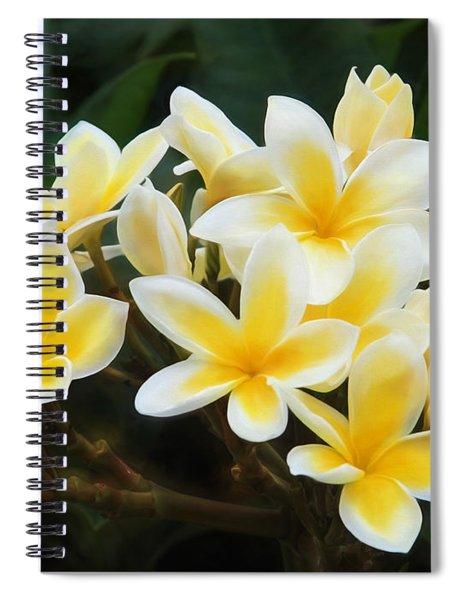 Plumeria Power Spiral Notebook