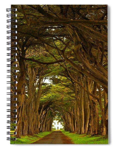 Point Reyes Cypress Tunnel Spiral Notebook