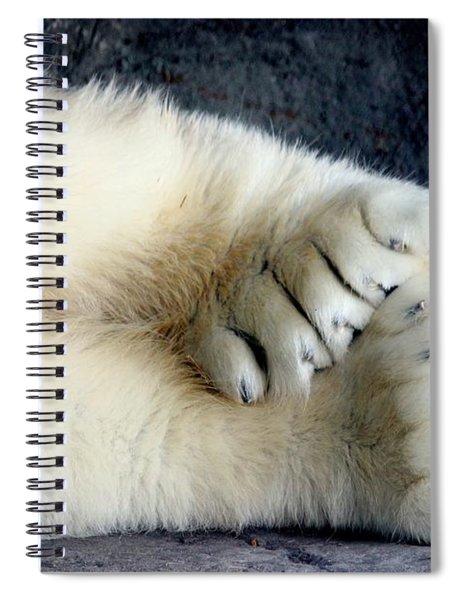 Polar Bear Paws Spiral Notebook