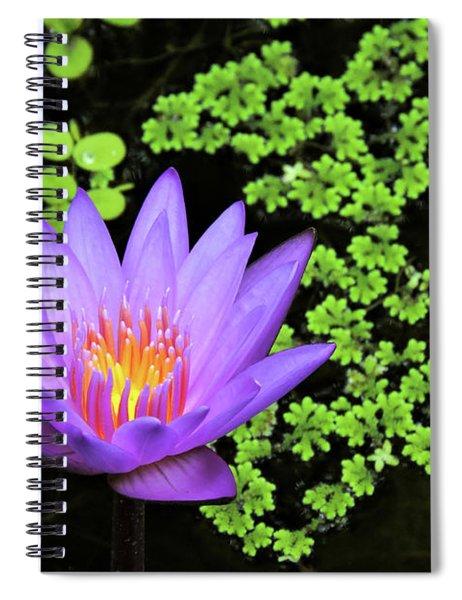 Pond Beauty Spiral Notebook