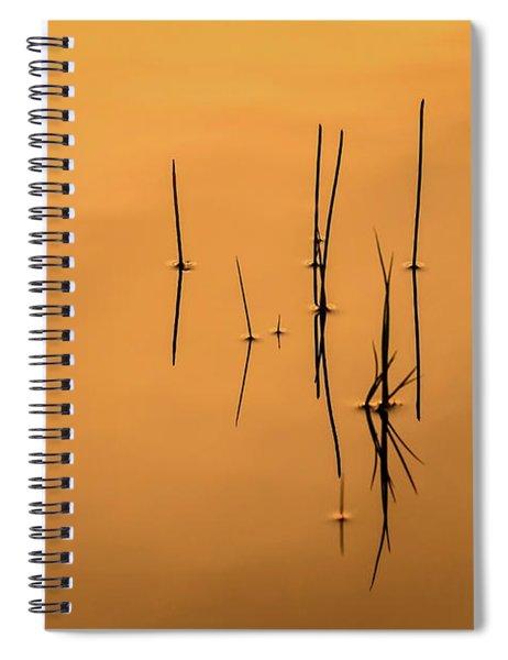 Pond Reeds In Reflected Sunrise Spiral Notebook