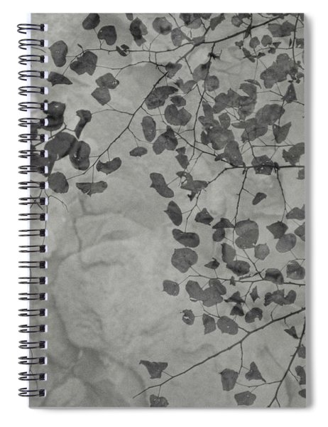 Pond Reflection Spiral Notebook