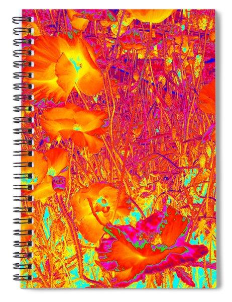 Poppies #6 Spiral Notebook