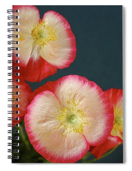 In Flanders Field Spiral Notebook