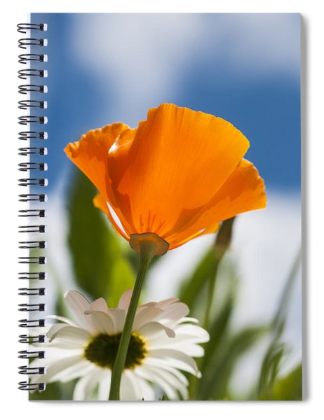 Poppy And Daisies Spiral Notebook