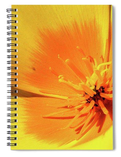 Poppy Impact Spiral Notebook