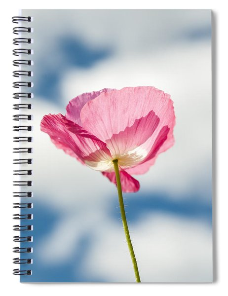 Poppy In The Clouds Spiral Notebook