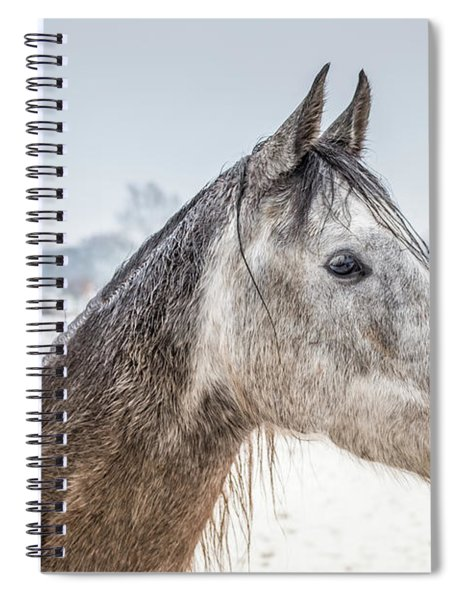 Portrait Amigo Spiral Notebook