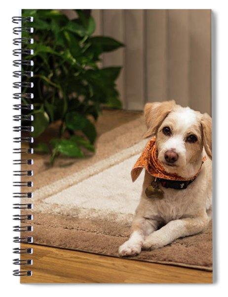 Portrait Of A Dog Spiral Notebook
