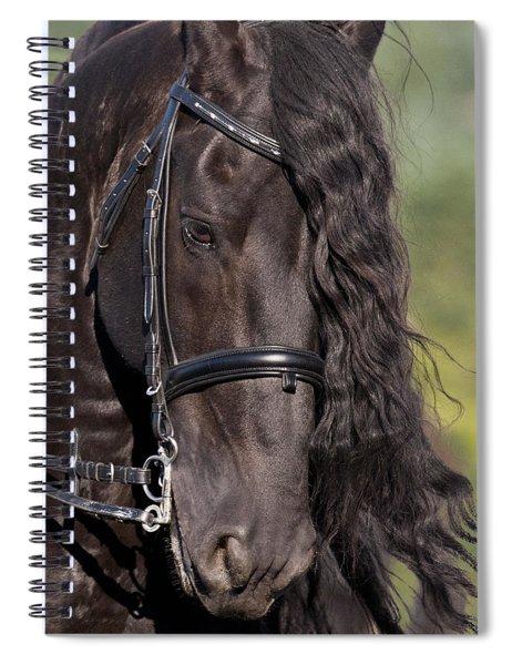 Portrait Of A Friesian Spiral Notebook