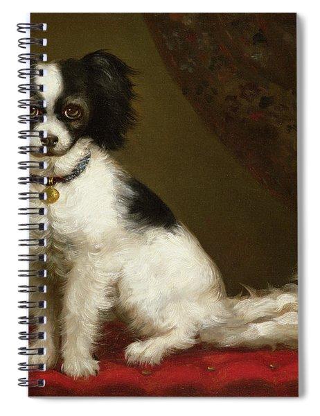 Portrait Of A Spaniel Spiral Notebook
