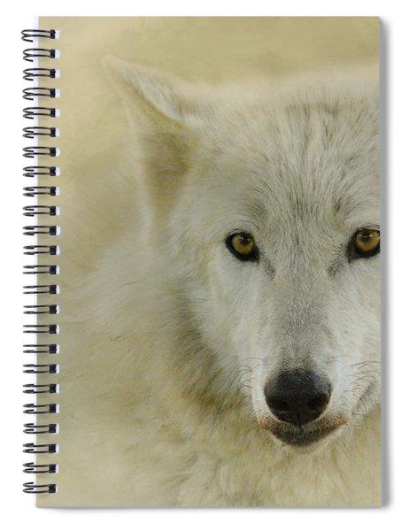 Portrait Of A Timber Wolf Spiral Notebook