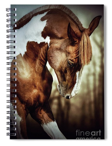 Portrait Of Paint Horse Stallion Spiral Notebook