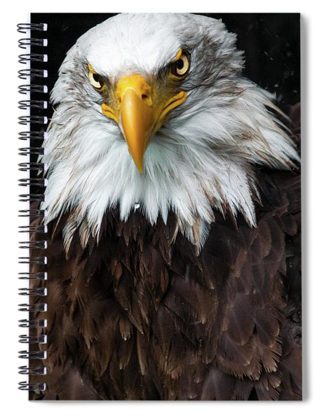Power Of The Eagle Spiral Notebook